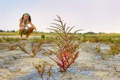 Lugares salvajes del viaje Fotos de archivo libres de regalías