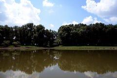 Lugares selvagens nos braços de Danúbio fotografia de stock