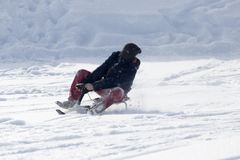 Luge sledding. In the park in nature Stock Images