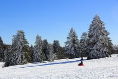 Luge in the Vosges in winter. The massif of Vosges in winter Trois-Fours station royalty free stock photo