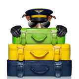 Luggage captain dog Stock Photo