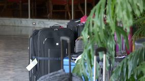 Luggage outside hotel. Pan around luggage sitting outside hotel lobby through tree stock footage
