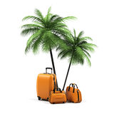 Luggage and palms. On a white background Stock Image