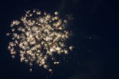4 luglio fuochi d'artificio Fotografia Stock Libera da Diritti