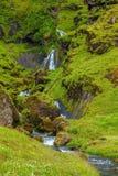 Luglio in Islanda Immagine Stock