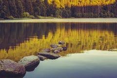 Lugn över sjön Royaltyfri Bild