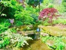Lugn av trädgården royaltyfri fotografi