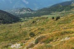 Lugna äng i Svaneti berg Georgia Arkivfoto