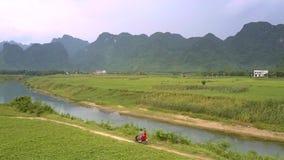 Lugna blåa buktiga flodflöden längs gröna breda jordnötfält lager videofilmer