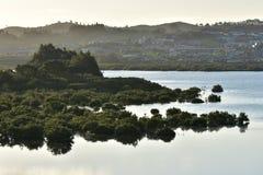 Lugna bred flodmynningvatten Arkivfoton