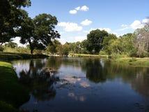 Lugna Creekview Royaltyfri Foto