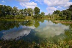 Lugna damm under dag Fotografering för Bildbyråer