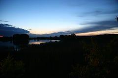 Lugna dammyttersida med trä i trevlig soluppgång med gryning och dimma Fotografering för Bildbyråer