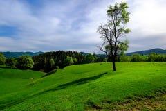 Lugna det Styrian landskapet arkivfoto