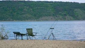 Lugna fiske på floden nära skog stock video