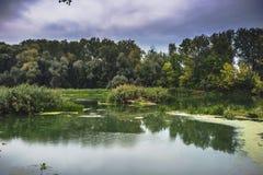 Lugna flod i sommarmorgonen med gröna träd på bakgrund arkivbilder