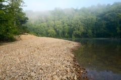 Lugna flod vid den dimmiga skogen Fotografering för Bildbyråer
