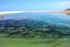 Lugna gröna lugna vatten som är blåa och royaltyfri fotografi