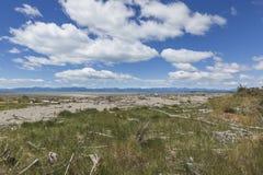 Lugna hav av Abel Tasman National Park, södra ö, nya Ze Royaltyfria Bilder