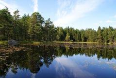 lugna lake för blue royaltyfri foto