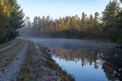 Lugna och dimmig morgon nära en kanal i Sverige arkivfoton