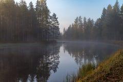 Lugna och dimmig morgon nära en kanal i Sverige fotografering för bildbyråer