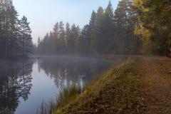 Lugna och dimmig morgon nära en kanal i Sverige arkivbilder
