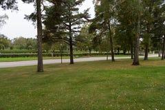 Lugna och härlig minnesmärke i en kyrkogård i Mariestad Sverige Royaltyfri Foto