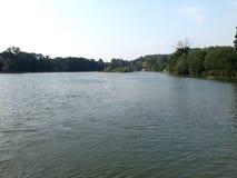 Lugna sjö med skogbakgrund Royaltyfri Bild
