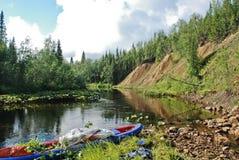 Lugna skogflod. Arkivbild