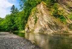 Lugna skogflod under den steniga klippan Fotografering för Bildbyråer