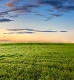lugna solnedgång Royaltyfria Foton