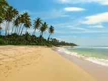 Lugna strand med palmträd och sand, Sri Lanka Fotografering för Bildbyråer