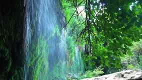 Lugna vattenfall i skog stock video