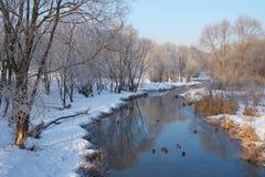 Lugna vinterdag Arkivbild