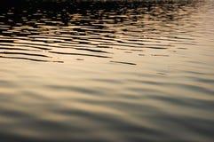 lugnat lakevatten Arkivbild