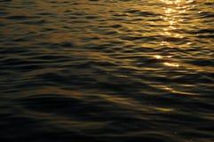 lugnat soligt vatten Royaltyfri Bild