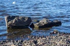 lugnat vatten Fotografering för Bildbyråer