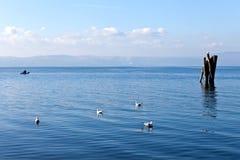 Lugnat vatten för Blue - Bracciano Lake royaltyfria foton