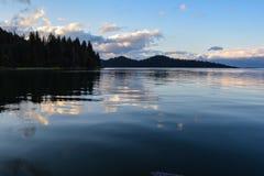 Lugnt vatten Arkivfoton