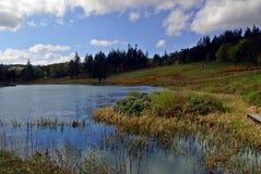 lugnt vatten Arkivfoto