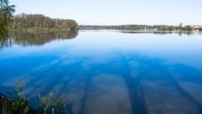 Lugnt vatten av dammet och avspeglabilderna av träden Royaltyfri Bild