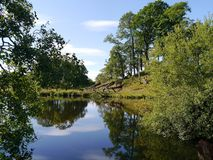 Lugnt vatten som omges av träd Arkivfoton