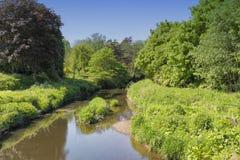 Lugton wody Eglinton park Irvine Obrazy Royalty Free