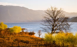 Lugu Lake bank Royalty Free Stock Photos