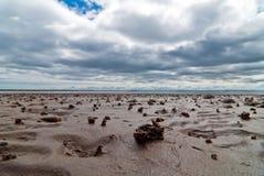 Lugworm pile on the beach. Lug worm pile on the beach with clouds and sky Stock Photos