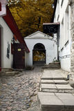 Luhike jalg, Tallinn. The most famous street of Tallinn Royalty Free Stock Photos