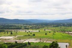 Lui coltivazione di area per l'agricoltura dell'agricoltore Immagini Stock Libere da Diritti
