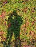 Lui et elle Amour des ombres Photos stock