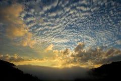 Luifel van het bergketen de tropische regenwoud bij zuidelijk van Thailan Royalty-vrije Stock Foto